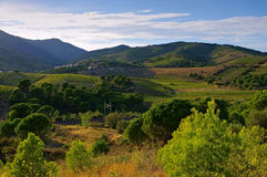 Cote Vermeille, hills in France Royalty Free Stock Images