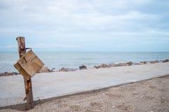 Coto na praia Fotos de Stock Royalty Free