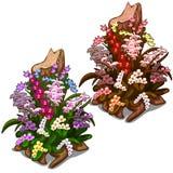 Coto velho coberto de vegetação com as flores selvagens coloridas ilustração stock