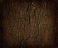 Coto velho da árvore Fotografia de Stock