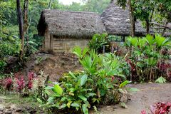 Cotococha-Gemeinschaft, Amazonas-Gebiet, Ecuador lizenzfreies stockbild