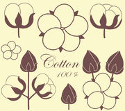 coton Images stock