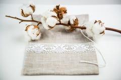 Coton et tissu Photographie stock libre de droits