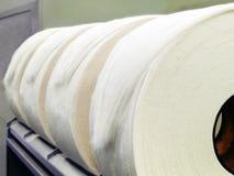 Cotone Rolls Immagine Stock Libera da Diritti