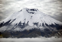 Cotopaxi. Is the highest active volcano in the world and is a favorite destination for mountain climbers from many nations Royalty Free Stock Photography
