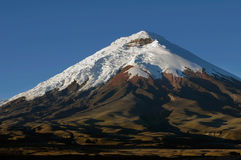 Cotopaxi 5897 m Royalty Free Stock Photos