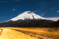 Cotopaxi moonlight Stock Photography