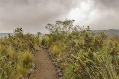 Cotopaxi National Park Landscape Scene Royalty Free Stock Image