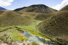 Cotopaxi National Park Royalty Free Stock Photography