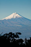 Cotopaxi volcano on a clear day Stock Photography