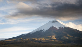 Cotopaxi volcano in ecuador. The majestic snow capped Cotopaxi Volcano resides in the national park of the same name in Ecuador royalty free stock images