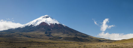 Cotopaxi volcano in ecuador Royalty Free Stock Photos