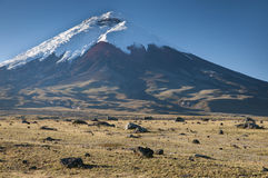 Cotopaxi volcano in ecuador Royalty Free Stock Images