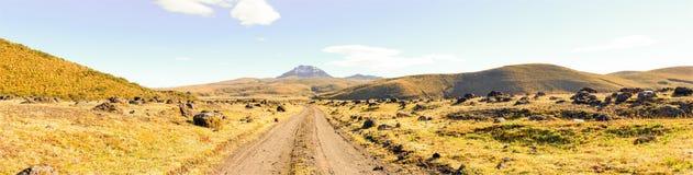 Cotopaxi Volcano National Park Panorama Royaltyfri Fotografi