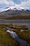 Cotopaxi vulkan Royaltyfria Foton