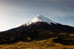 Cotopaxi-Vulkan Stockfotografie