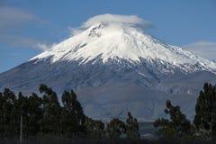 Cotopaxi vulkan, Andean Skotska högländerna av Ecuador Royaltyfri Fotografi