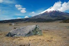 Cotopaxi-Vulkan in einer Andenlandschaft Stockbild