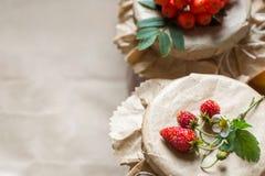Cotos y fresas crudas, bayas de la fruta de serbales en tarros Fotografía de archivo