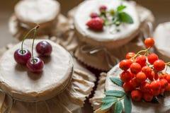 Cotos y fresas crudas, cerezas, bayas de la fruta de serbales en tarros Foto de archivo