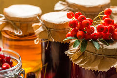 Cotos y fresas crudas, cerezas, serbales de la fruta Imagen de archivo