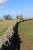 Cotswold Dry-Stone Wall. This picture shows a cotswold stone wall, built in the traditional style, without any mortar or cement. There are some bushes, devoid of Royalty Free Stock Photography