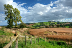 Cotswold harvest time Royalty Free Stock Photography