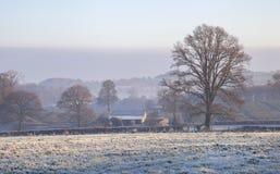 Cotswold krajobraz w zimie Zdjęcie Royalty Free