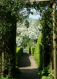 Cotswold landscape of trees and spring blossom Royalty Free Stock Photo
