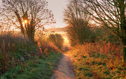 The Cotswold Way, Gloucestershire. The sun rising on the Cotswold Way near Chipping Campden, Gloucestershire, England Royalty Free Stock Photo