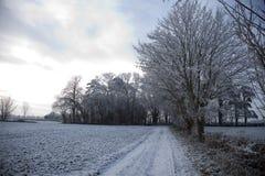 cotswold wsi mroźni ranek Zdjęcie Royalty Free
