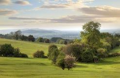 Cotswolds landskap i vår Arkivbild