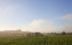 Cotswolds rural avec la brume, Gloucestershire, Angleterre images stock