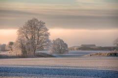 Cotswolds-Wintermorgen Lizenzfreie Stockbilder