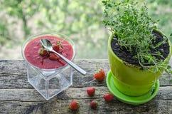 Cotta de Panna avec de la sauce à fraise Photos libres de droits