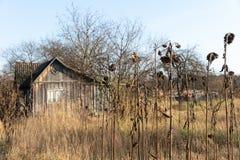Cottage abandonné de maison en bois en Ukraine Soviétique typique images libres de droits
