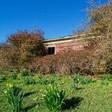 Cottage abandonné abandonné et envahi image stock