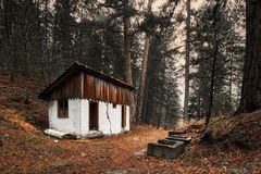 Cottage abbandonato in foresta Immagini Stock