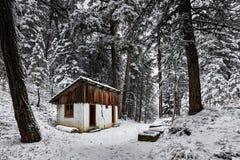 Cottage abbandonato in foresta ed in neve Fotografia Stock Libera da Diritti