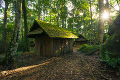 Cottage abbandonato nella foresta Fotografia Stock
