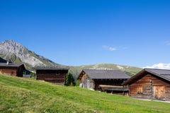 Cottage all'alpe 1 di Wiesner 945m nel ¼ di Davos Wiesen Graubà nden la vista della Svizzera di estate Fotografia Stock