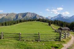 Cottage all'alpe 1 di Wiesner 945m nel ¼ di Davos Wiesen Graubà nden la vista della Svizzera di estate Immagini Stock