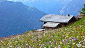 Cottage in the Alpine. A Cottage amongst the Wildflowers in the Swiss Alpine stock images