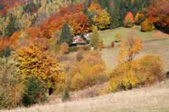 Cottage in autumn Royalty Free Stock Images
