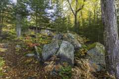 Cottage in Autumn with Large Rocks in the Foreground. Small Cottage in a Fall Forest with Large Rocks in the Foreground - Haliburton, Ontario, Canada stock images