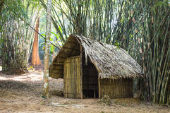 Cottage In the bamboo forest Royalty Free Stock Photo