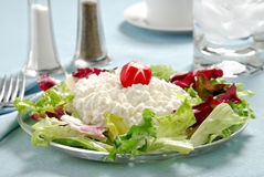 Cottage Cheese royalty free stock photo