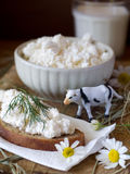 Cottage Cheese And Milk Stock Image