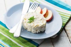 Cottage cheese and apple on  plate Royalty Free Stock Images