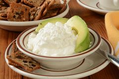 Cottage cheese and avocado Royalty Free Stock Photos